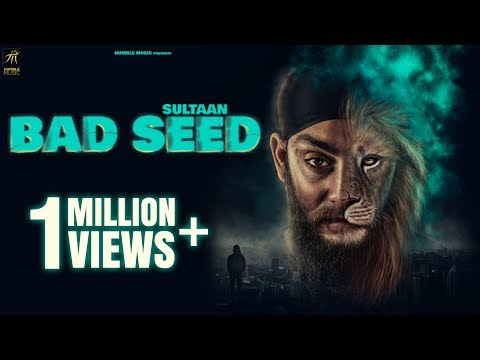 Bad Seed video song