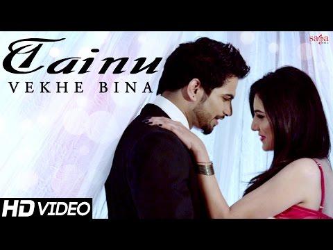 Tainu Vekhe Bina video song